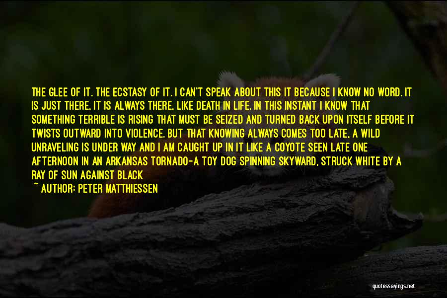 Life Comes Once Quotes By Peter Matthiessen