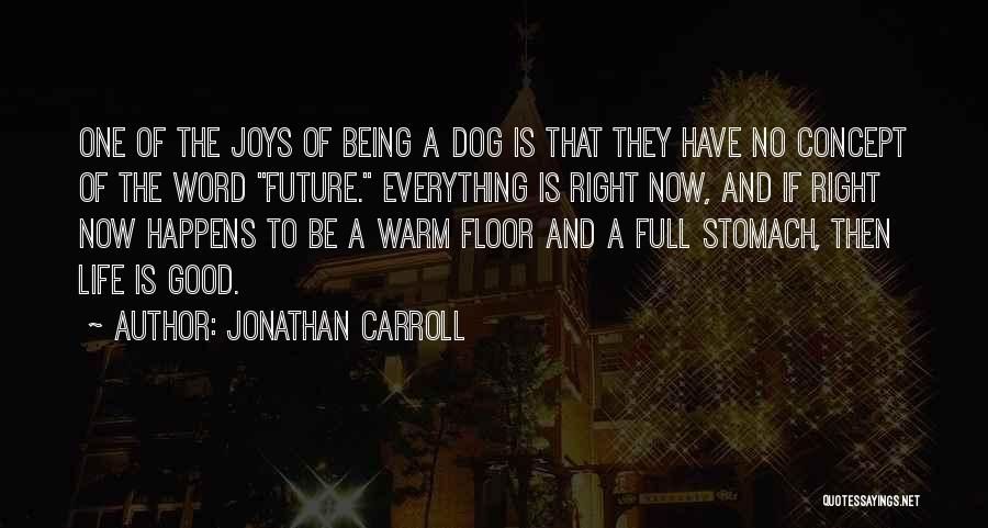 Life Concept Quotes By Jonathan Carroll