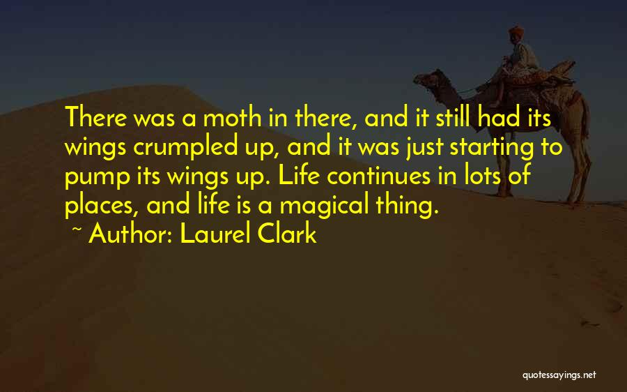 Life Continues Quotes By Laurel Clark