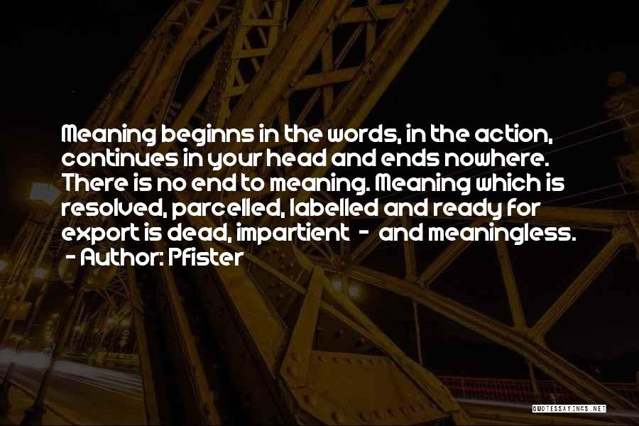 Life Continues Quotes By Pfister