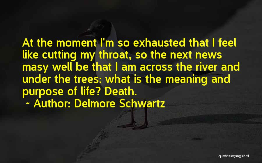 Life Death And Meaning Quotes By Delmore Schwartz