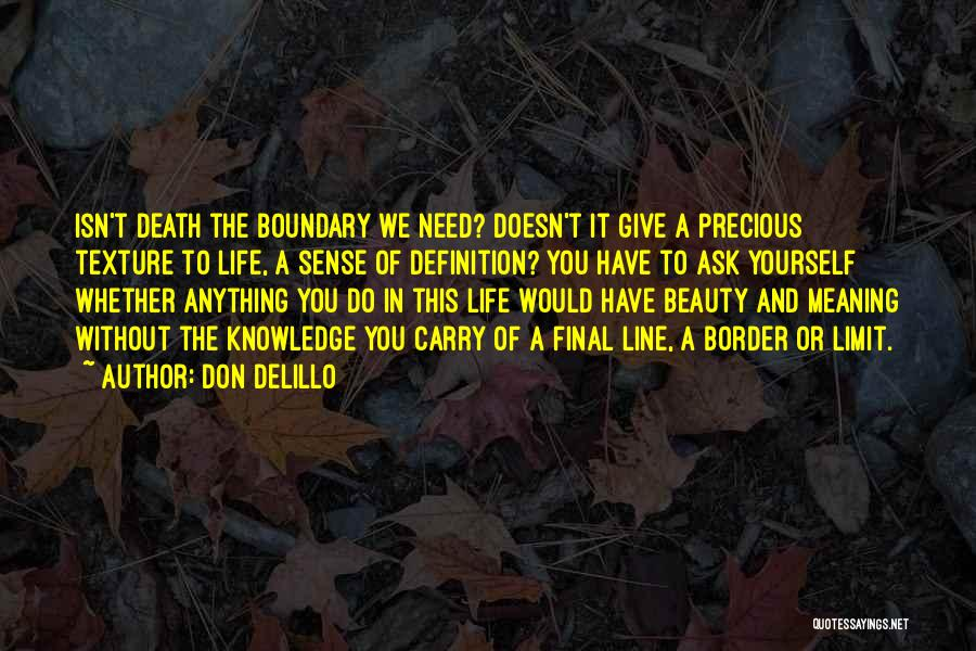 Life Death And Meaning Quotes By Don DeLillo