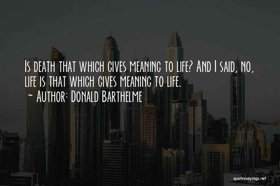 Life Death And Meaning Quotes By Donald Barthelme