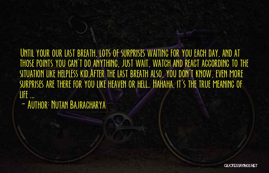 Life Death And Meaning Quotes By Nutan Bajracharya