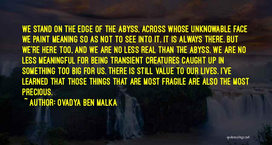 Life Death And Meaning Quotes By Ovadya Ben Malka