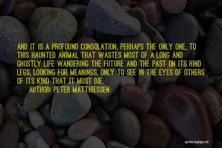 Life Death And Meaning Quotes By Peter Matthiessen