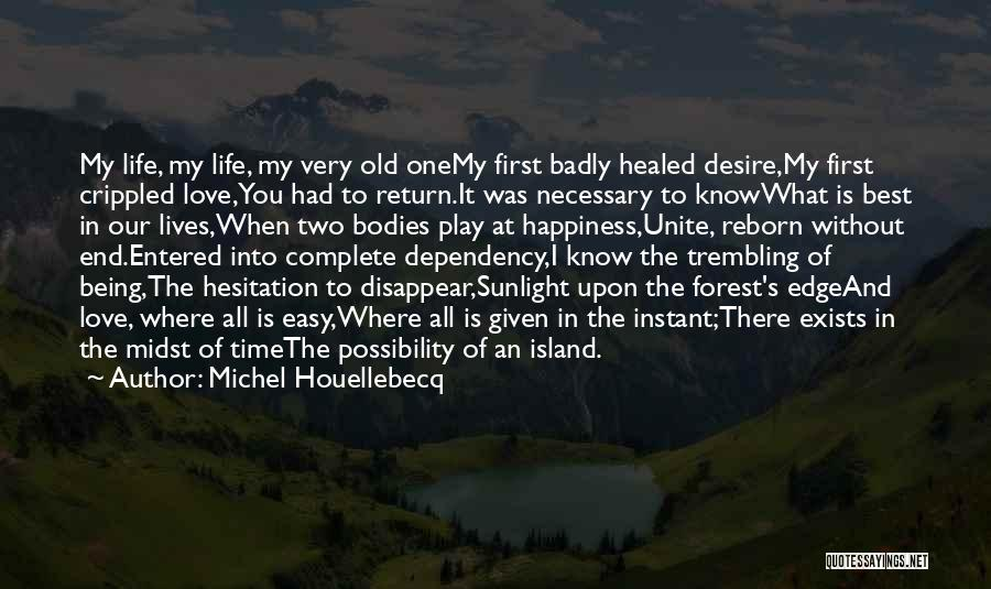 Life Dependency Quotes By Michel Houellebecq