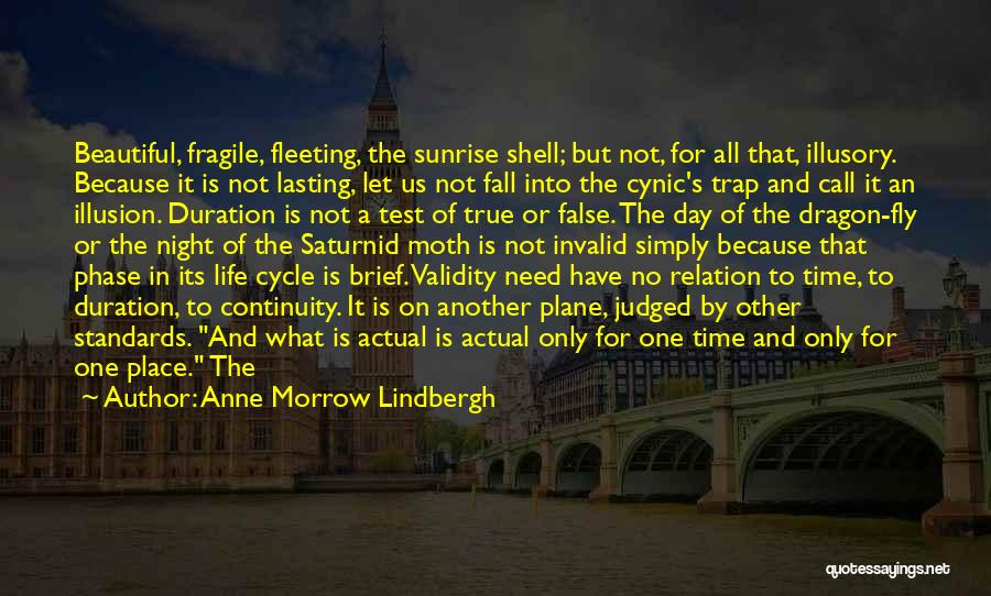 Life Fly By Quotes By Anne Morrow Lindbergh