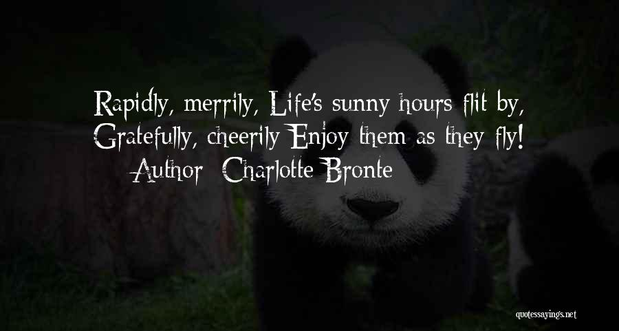Life Fly By Quotes By Charlotte Bronte