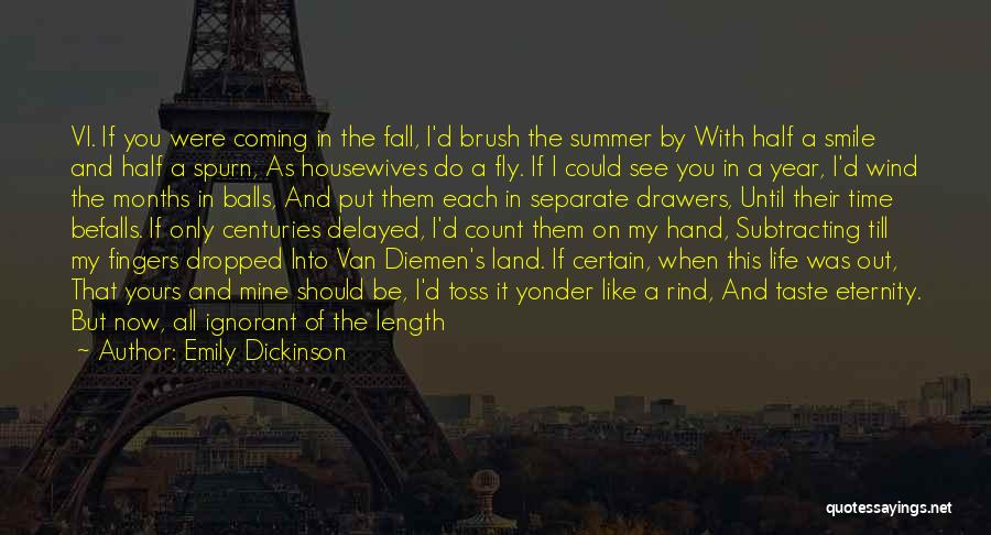 Life Fly By Quotes By Emily Dickinson
