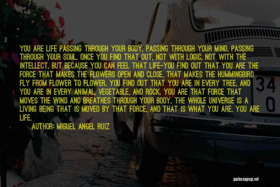 Life Fly By Quotes By Miguel Angel Ruiz