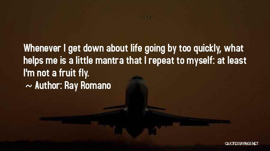 Life Fly By Quotes By Ray Romano