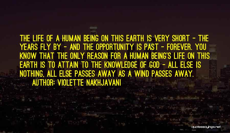 Life Fly By Quotes By Violette Nakhjavani