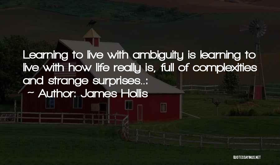 Life Full Of Surprises Quotes By James Hollis