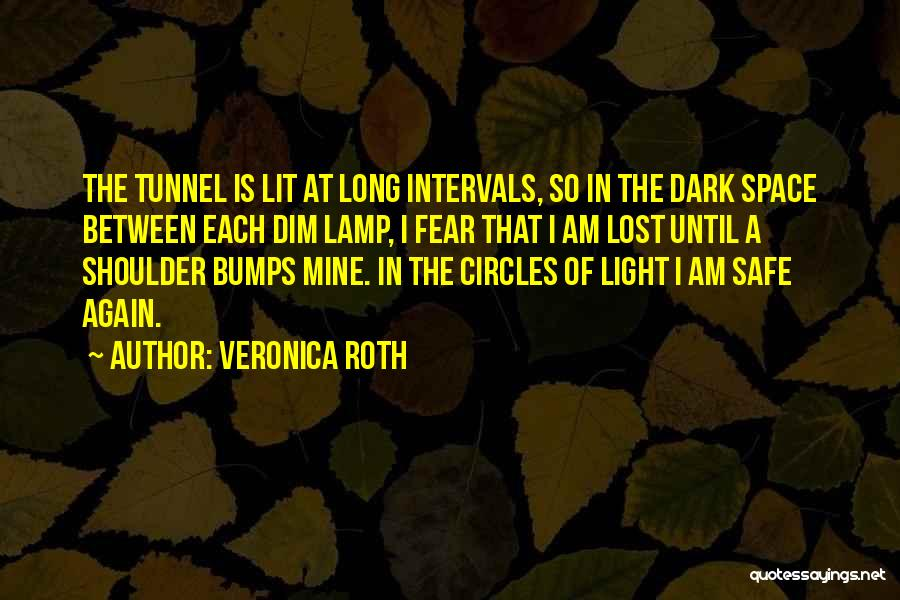 Life Goes In Circles Quotes By Veronica Roth