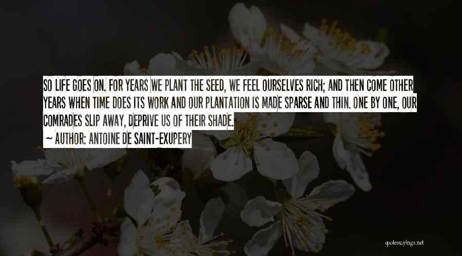 Life Goes Quotes By Antoine De Saint-Exupery