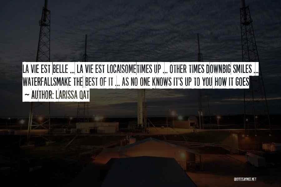 Life Goes Quotes By Larissa Qat