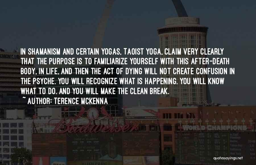 Life Going On After A Break Up Quotes By Terence McKenna