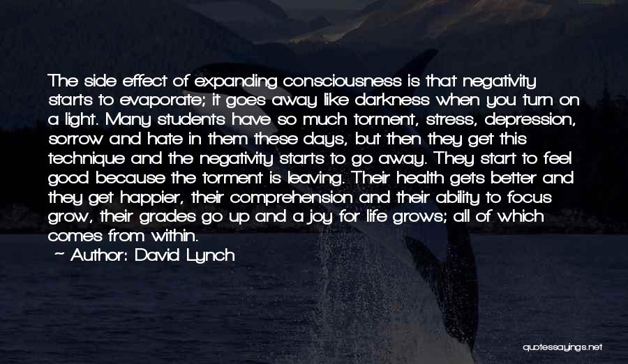 Life Grows Quotes By David Lynch
