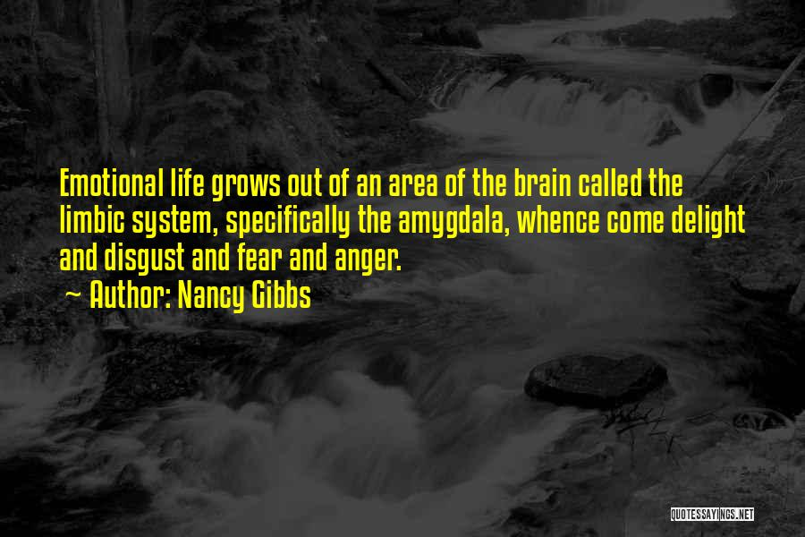 Life Grows Quotes By Nancy Gibbs