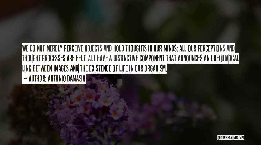 Life Images Quotes By Antonio Damasio