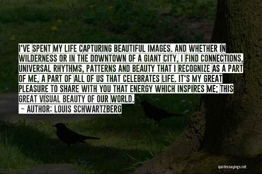 Life Images Quotes By Louis Schwartzberg