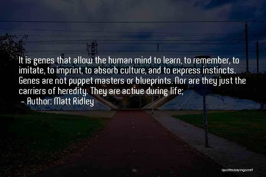 Life Imprint Quotes By Matt Ridley