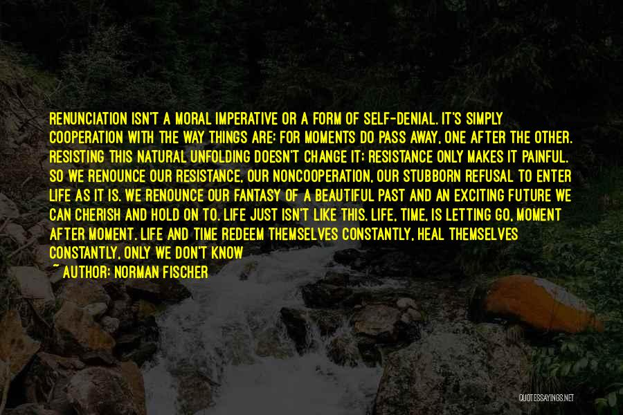 Life Indulgence Quotes By Norman Fischer