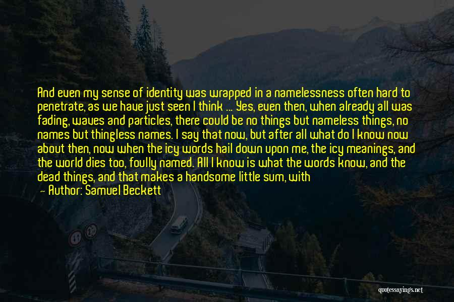 Life Is Hell Without You Quotes By Samuel Beckett