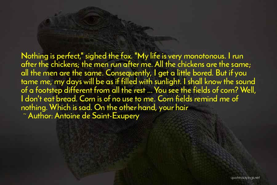 Life Is Perfect With You Quotes By Antoine De Saint-Exupery