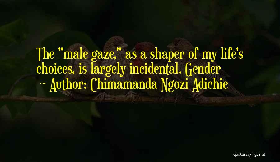 Life Is Quotes By Chimamanda Ngozi Adichie