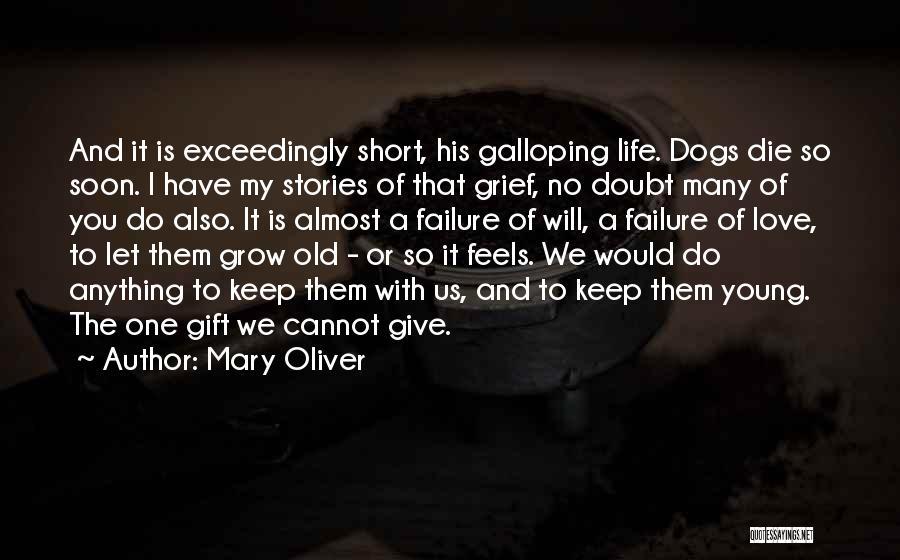 Life Is Short So Quotes By Mary Oliver