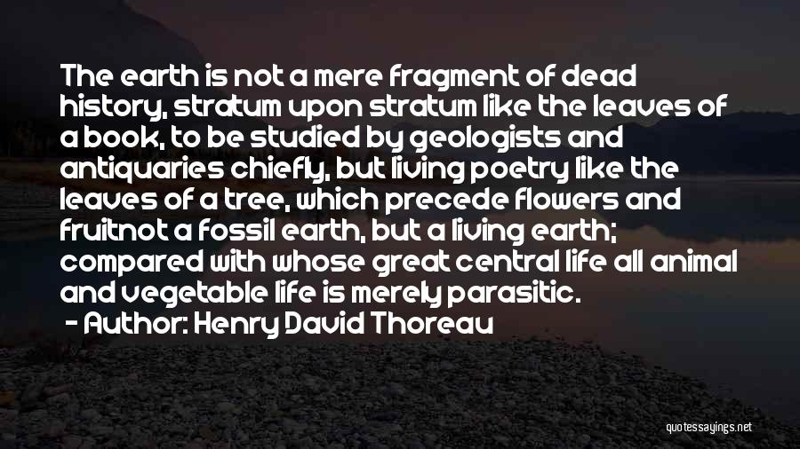 Life Like A Tree Quotes By Henry David Thoreau