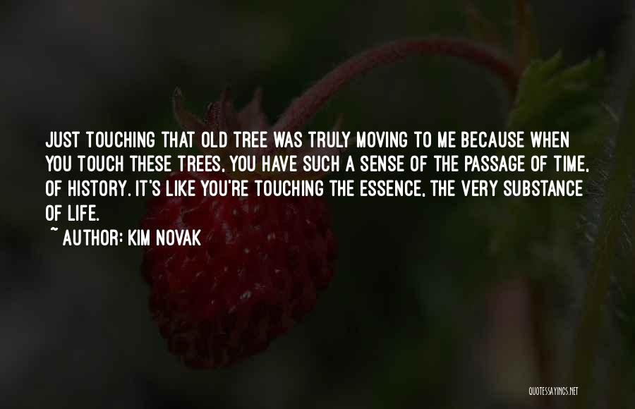 Life Like A Tree Quotes By Kim Novak