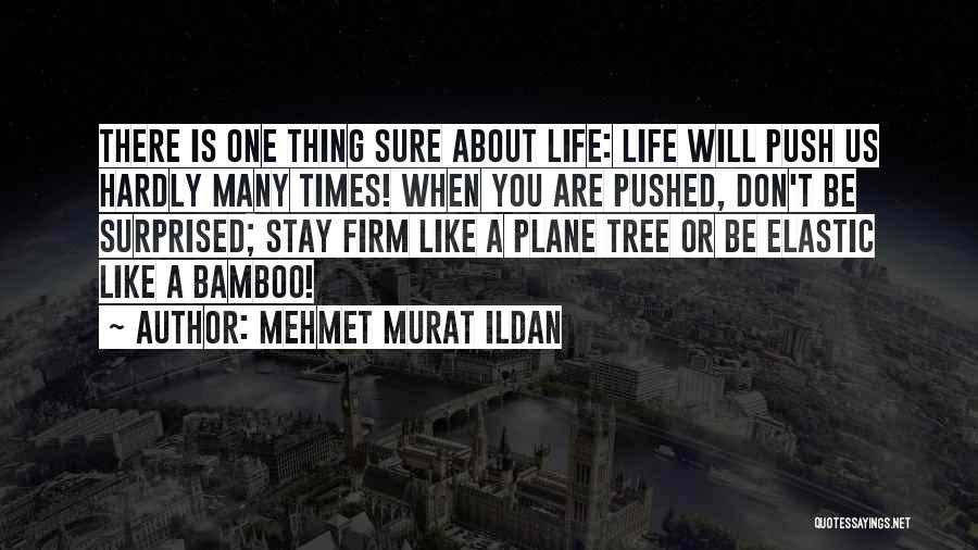 Life Like A Tree Quotes By Mehmet Murat Ildan