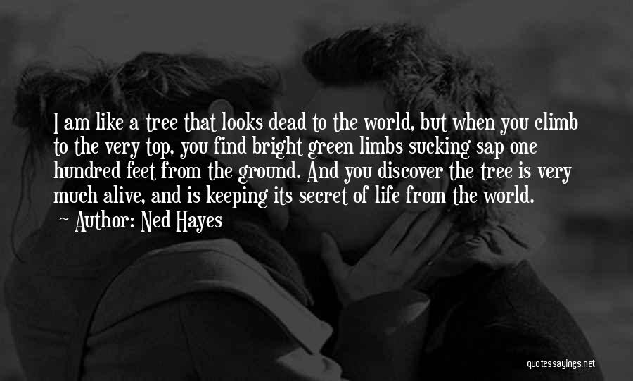 Life Like A Tree Quotes By Ned Hayes