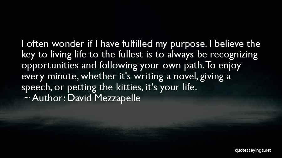 Life Living Your Life To The Fullest Quotes By David Mezzapelle