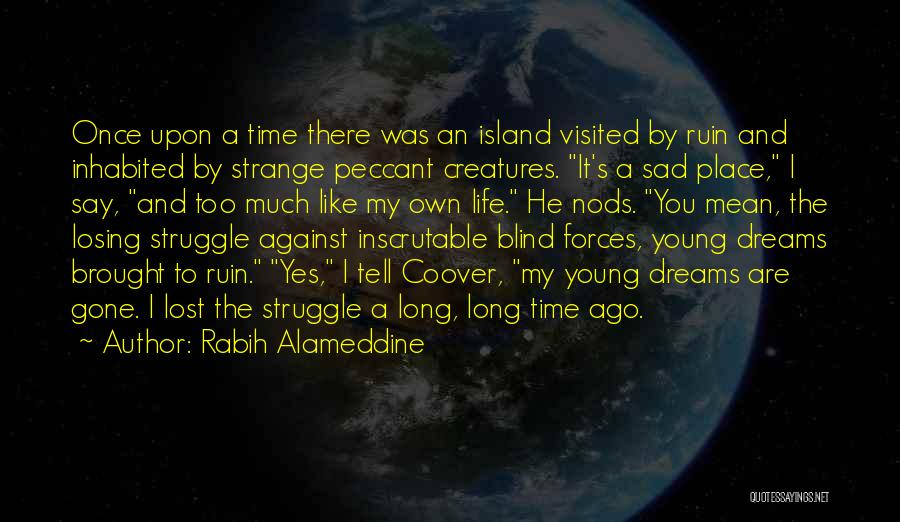 Life Lost Too Young Quotes By Rabih Alameddine