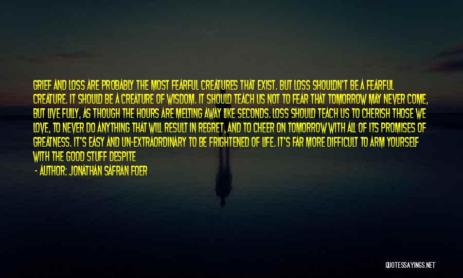 Life Love And Regret Quotes By Jonathan Safran Foer