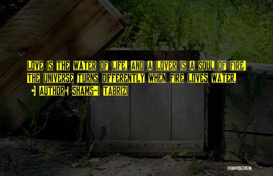 Life Lover Quotes By Shams-i Tabrizi