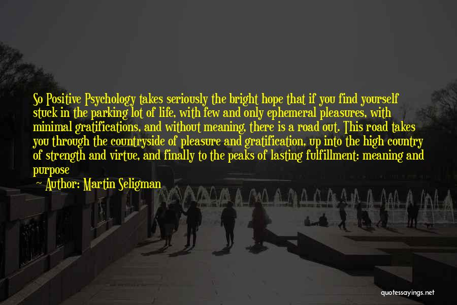 Life Of Purpose Quotes By Martin Seligman