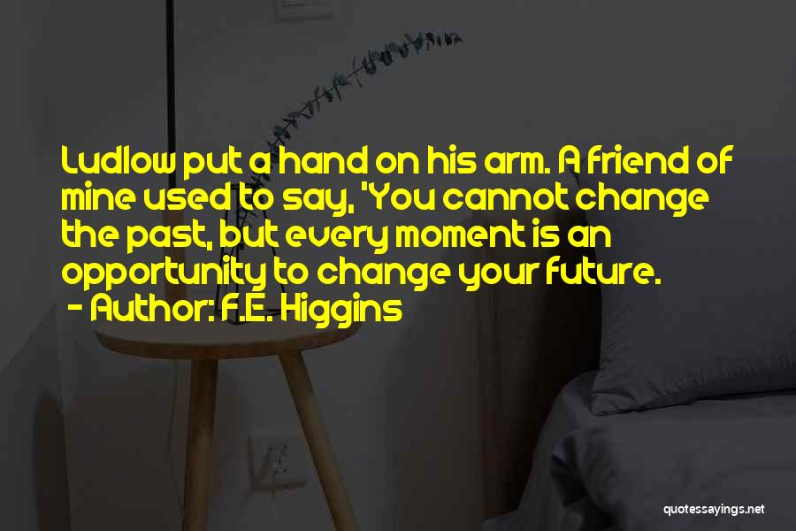 Life Path Change Quotes By F.E. Higgins