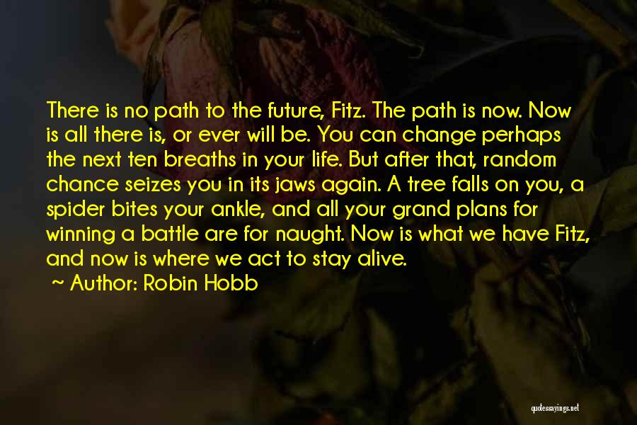 Life Path Change Quotes By Robin Hobb