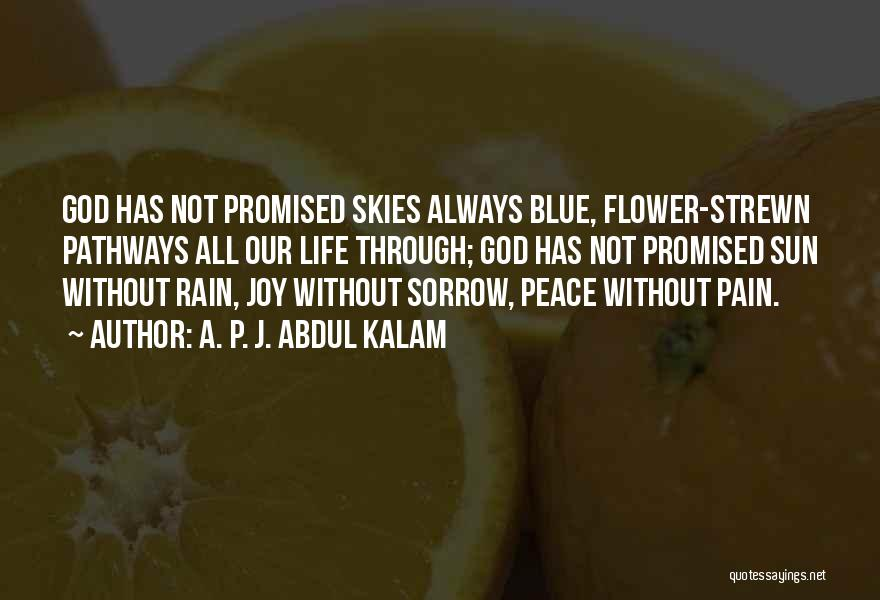 Life Pathways Quotes By A. P. J. Abdul Kalam