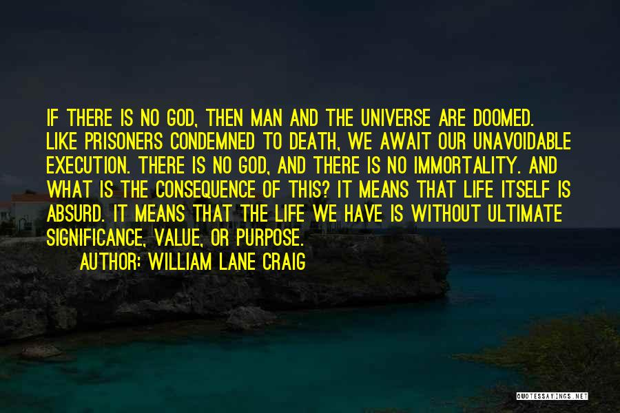 Life Significance Quotes By William Lane Craig