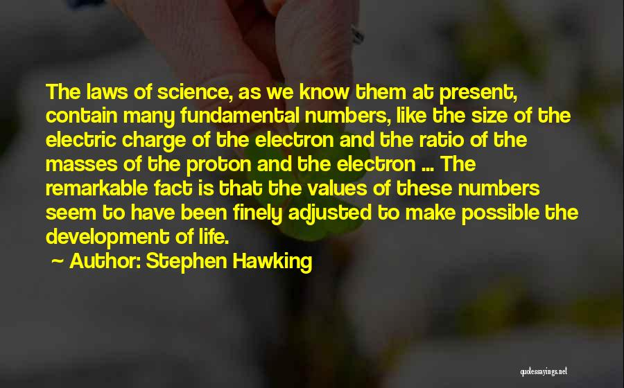 Life Size Quotes By Stephen Hawking
