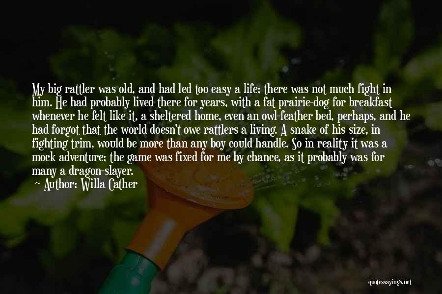 Life Size Quotes By Willa Cather