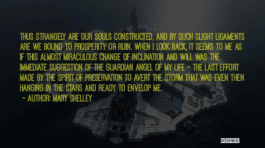 Life Suggestion Quotes By Mary Shelley