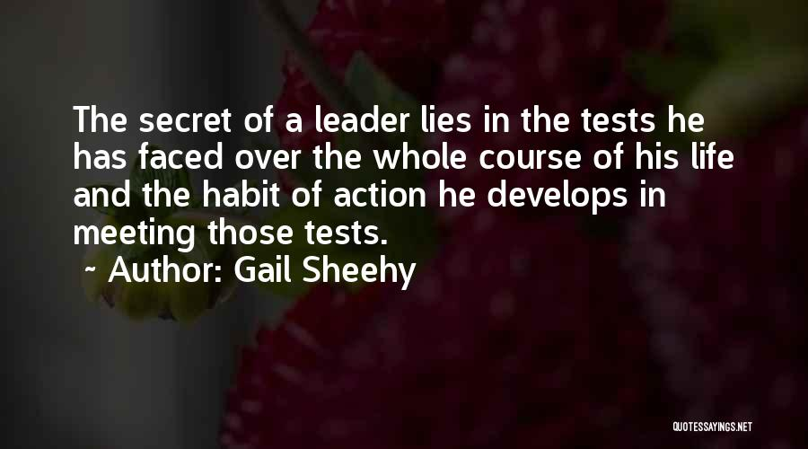 Life The Secret Quotes By Gail Sheehy