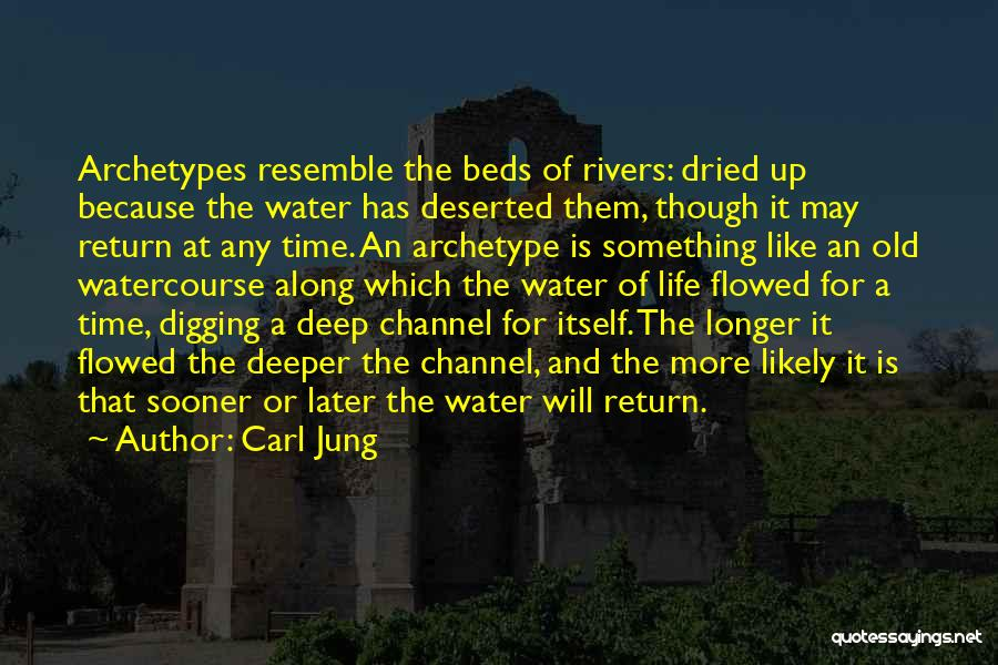 Life Water Quotes By Carl Jung